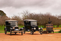 A collection of old vintage cars, two old T Fords Bodega Bouza Winery, Canelones, Montevideo, Uruguay, South America