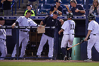 Tampa Yankees center fielder Mark Payton (11) fist bumps coach Tom Slater and outfielder Zack Zehner (left) after scoring a run during a game against the Lakeland Flying Tigers on April 8, 2016 at George M. Steinbrenner Field in Tampa, Florida.  Tampa defeated Lakeland 7-1.  (Mike Janes/Four Seam Images)