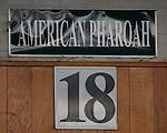 Stall forTriple Crown winner American Pharoah in the paddock.