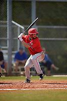 Ball State Cardinals designated hitter Chase Sebby (20) bats during a game against the Mount St. Mary's Mountaineers on March 9, 2019 at North Charlotte Regional Park in Port Charlotte, Florida.  Ball State defeated Mount St. Mary's 12-9.  (Mike Janes/Four Seam Images)