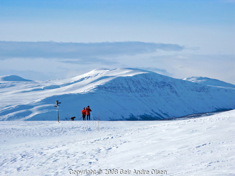 Two skiers enjoy the view of the Norwegian mountains one beautiful winters day at Venabygdsfjell, close to the small city Ringebu, north of Lillehammer in Norway