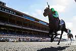 AUG 6,2014:Sunset Glow,ridden by Victor Espinoza,wins the Sorrento Stakes at Del Mar in Del Mar,CA. Kazushi Ishida/ESW/CSM
