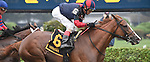 Irish Mission (no. 6), ridden by John Velazquez and trained by Christophe Clement, wins the 19th running of the grade 3 Glens Falls Stakes for fillies and mares three years old and upward on August 31, 2014 at Saratoga Race Course in Saratoga Springs, New York.  (Bob Mayberger/Eclipse Sportswire)