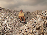 A.J. Erskine sits on a pile of oyster shell at Bevins Oyster Company in Virginia's Northern Neck. The shell will be returned to the Chesapeake Bay as a substrate for young oysters.