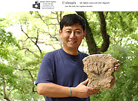 PROFESSOR DAVID ZHANG: HKU: HONG KONG UNIVERSITY: HONG KONG <br />