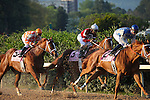 9 April 2010: Just Jenda just behind War Echo before Zenyatta, riden by Mike Smith, wins the 45th running of the Apple Blossom at Oaklawn in Hot Springs, Arkansas