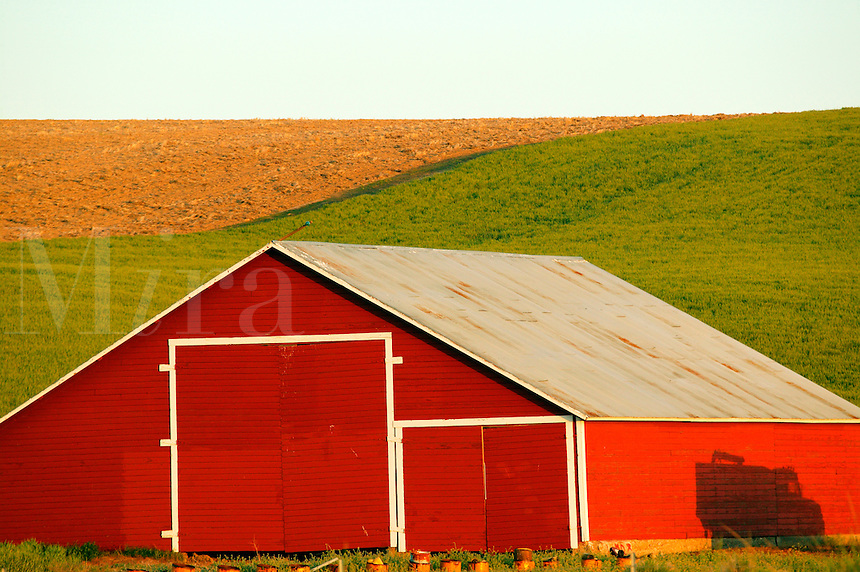 A Red barn in heat farmland near Ritzville, Eastern Washington