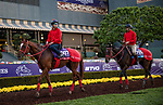 OCT 27: Breeders' Cup Sprint entrant Matera Sky, trained by Hideyuki Mori, and Breeders' Cup Juvenile Turf Sprint entrant Full Flat, trained by Hideyuki Mori,  at Santa Anita Park in Arcadia, California on Oct 27, 2019. Evers/Eclipse Sportswire/Breeders' Cup