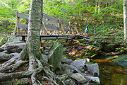 Footbridge along the Holt Trail in Orange, New Hampshire USA. This trail leads to the summit of Cardigan Mountain.