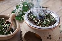 Räuchern mit getrockneten Weißdornblüten, Weißdorn-Blüten, Weißdorn, Weissdorn, Weiß-Dorn, Weiss-Dorn. Räucherritual, verräuchern, Duftkräuter, Duft, Räucher-Stövchen, Räucherstövchen, Räuchergefäß, Smoking, Smoking with herbs, wild herbs, aromatic herbs, fumigate, cure, censer, incense burner, perfume burner. Zweigriffliger Weißdorn, Zweigriffeliger Weißdorn, Crataegus laevigata, Crataegus oxyacantha, midland hawthorn, English hawthorn, woodland hawthorn, mayflower, May, L'Aubépine lisse, Aubépine à deux styles, Aubépine épineuse