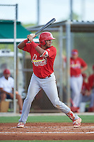 GCL Cardinals catcher Dennis Ortega (49) at bat during the first game of a doubleheader against the GCL Marlins on August 13, 2016 at Roger Dean Complex in Jupiter, Florida.  GCL Cardinals defeated GCL Marlins 4-2 in a continuation of a game originally started on August 8th.  (Mike Janes/Four Seam Images)