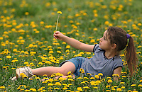 Girl (9-10) wearing blue shorts and top plays in a field of dandelions in the early spring