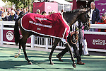 October 02, 2016, Chantilly, FRANCE - Speedy Boarding after winning the Prix de'l Opera Longines (Gr. I) at  Chantilly Race Course  [Copyright (c) Sandra Scherning/Eclipse Sportswire)