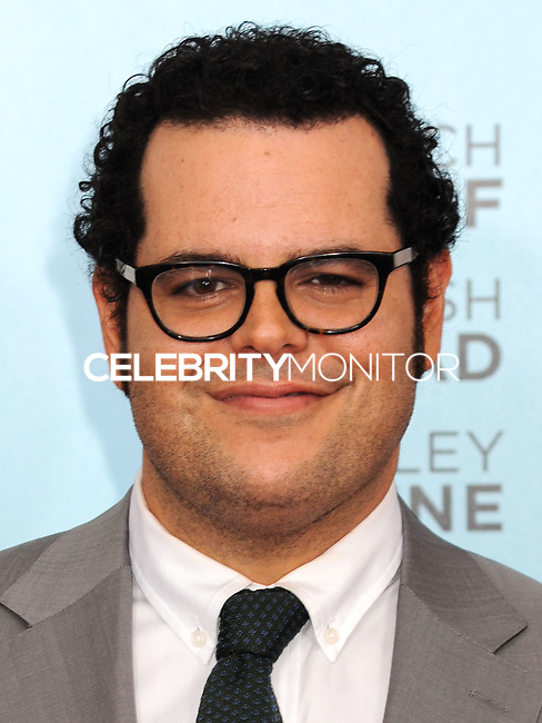 NEW YORK CITY, NY, USA - JULY 14: Josh Gad at the New York Screening Of Focus Features' 'Wish I Was Here' held at the AMC Lincoln Square Theater on July 14, 2014 in New York City, New York, United States. (Photo by Celebrity Monitor)