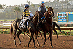 """DEL MAR, CA  AUGUST 18:  #2 Dr. Dorr, ridden by Joseph Talamo, in the post parade of the $1 Million TVG Pacific Classic (Grade l) """"Win and You're in Classic Division"""" on August 18, 2018 at Del Mar Thoroughbred Club in Del Mar, CA. (Photo by Casey Phillips/Eclipse Sportswire/Getty Images"""