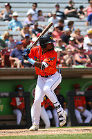 Wisconsin Timber Rattlers outfielder Joe Gray, Jr. (6) at bat during a game against the Quad Cities River Bandits on July 11, 2021 at Neuroscience Group Field at Fox Cities Stadium in Grand Chute, Wisconsin.  (Brad Krause/Four Seam Images)