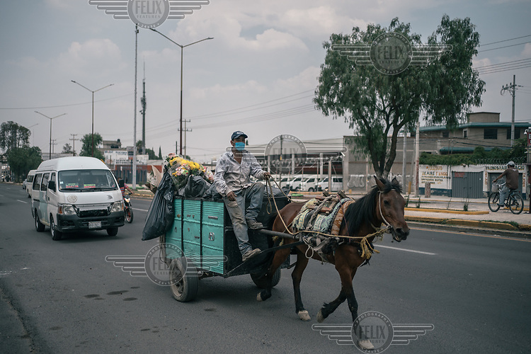 A man transporting rubbish carries flowers in the back of his horse-drawn carriage through Ciudad Nezahualcoyotl.