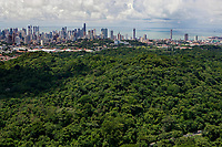 aerial photograph of the rain forest toward the skyline of Panama City, Panama, Panama Bay in the background fotografía aérea de la selva tropical hacia el horizonte de la Ciudad de Panamá, Panamá, Bahía de Panamá