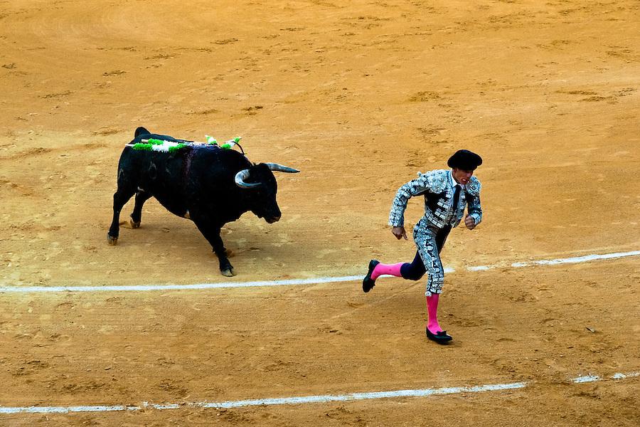 A Spanish bullfighter (banderillero) runs away from a bull at the bullring in Granada, Spain, 7 June 2006.