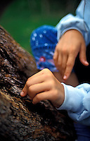 A child's hands touch the bark of an Ohia tree in Volcanoes National Park on the Big Island of Hawaii.