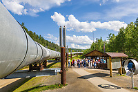 Trans Alaska oil pipeline viewing area along the Steese Highway, Fairbanks, Alaska.