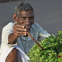 Delhi India Street Vendors