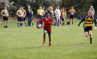 Photo: Richard Lane/Richard Lane Photography. Rosslyn Park HSBC National School Sevens. 28/03/2011. Rugby action.