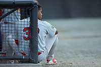 William Jimenez (32) of the Johnson City Cardinals watches the action from the dugout during the game against the Burlington Royals at Burlington Athletic Stadium on September 4, 2019 in Burlington, North Carolina. The Cardinals defeated the Royals 8-6 to win the 2019 Appalachian League Championship. (Brian Westerholt/Four Seam Images)