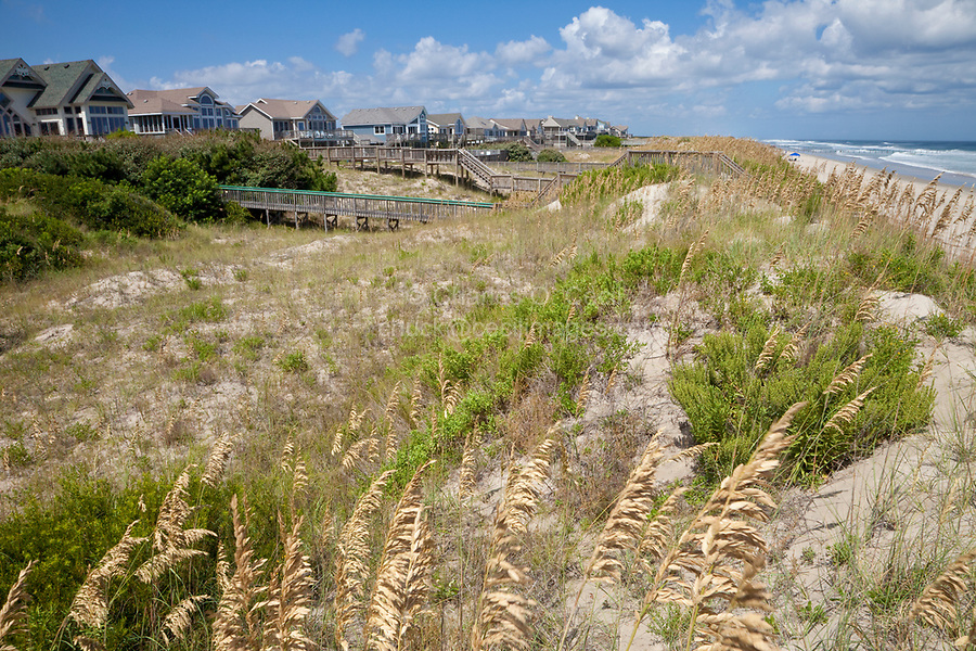 Sea Oats and a Small Dune of Sand Separate Beach Houses from the Atlantic's Waves on North Carolina's Outer Banks.