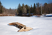 River driftwood along the Swift River in the White Mountains, New Hampshire USA