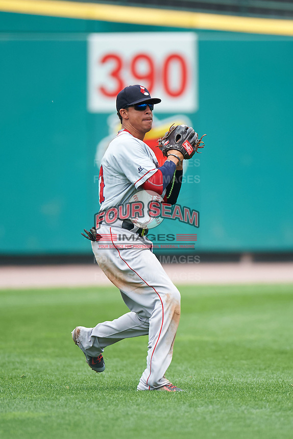 Pawtucket Red Sox outfielder Quintin Berry (17) throws the ball in during a game against the Rochester Red Wings on July 1, 2015 at Frontier Field in Rochester, New York.  Rochester defeated Pawtucket 8-4.  (Mike Janes/Four Seam Images)