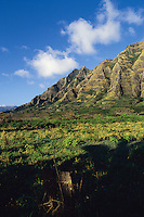 Kamaile ridge on  the Waianae coast of Oahu after the rains