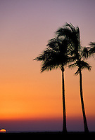 Beautiful sunset in Maili beach park, leeward Oahu.