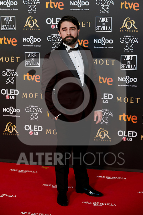 Gorka Lasaosa attends to 33rd Goya Awards at Fibes - Conference and Exhibition  in Seville, Spain. February 02, 2019. (ALTERPHOTOS/A. Perez Meca)