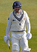 Kent's Darren Stevens in despair after being dismissed by David Willey during Kent CCC vs Yorkshire CCC, LV Insurance County Championship Group 3 Cricket at The Spitfire Ground on 18th April 2021