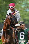July 11, 2015: St. Albans Boy, Carol Cedeno up, circles the walking ring before competing in the Cape Henlopen Stakes. #9 Holiday Star, Edgar Prado up,                               wins the Cape Henlopen Stakes, one and 1/2 miles on the turf for three year olds and upwards at Delaware Park in Stanton DE. Trainer is Graham Motion; owner is Augustin Stable. Joan Fairman Kanes/ESW/CSM