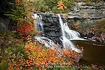 Backwater Falls, Blackwater Falls State Park, West Virginia