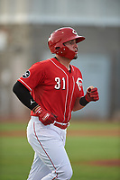 AZL Reds Wendell Marrero (31) jogs to first base after drawing a walk during an Arizona League game against the AZL Athletics Green on July 21, 2019 at the Cincinnati Reds Spring Training Complex in Goodyear, Arizona. The AZL Reds defeated the AZL Athletics Green 8-6. (Zachary Lucy/Four Seam Images)