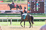 September 05, 2020: Pivotal Run ridden by Kendrick Carmouche trained Michelle Nevin  in 4th Race on New York Bred Stakes day at Saratoga Race Course in Saratoga Springs, New York. Rob Simmons/CSM