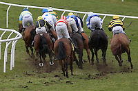 Horse Racing 2012