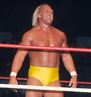 Hulk Hogan 1986                                                Photo By John Barrett/PHOTOlink