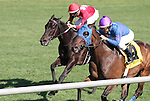 April 04, 2015:   Something Extra and jockey Shaun Bridgmohan win the 19th running of The Shakertown Grade 3 $125,000  at Keeneland Racecourse for owner Jim and Susan Hill, and trainer Gail Cox.  Candice Chavez/ESW/CSM