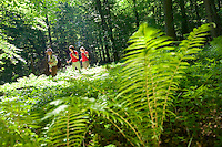 Hiking the Gold Trail in Thuringer Wald, Germany