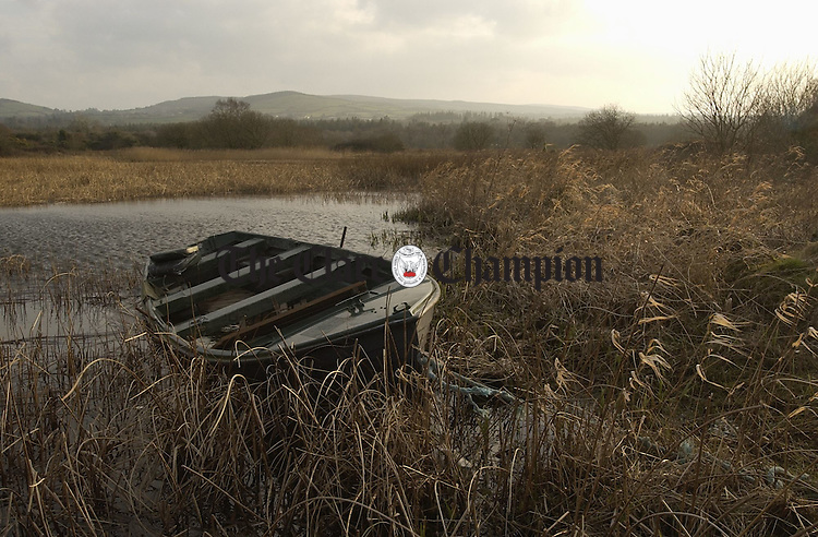 A tranquil view of Lough Derg from the little harbour on the Mountshannon road in Scarriff.Photograph by John Kelly.