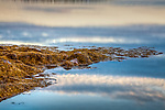 Cloud Reflections on Taunton Bay, Hancock County, ME, USA