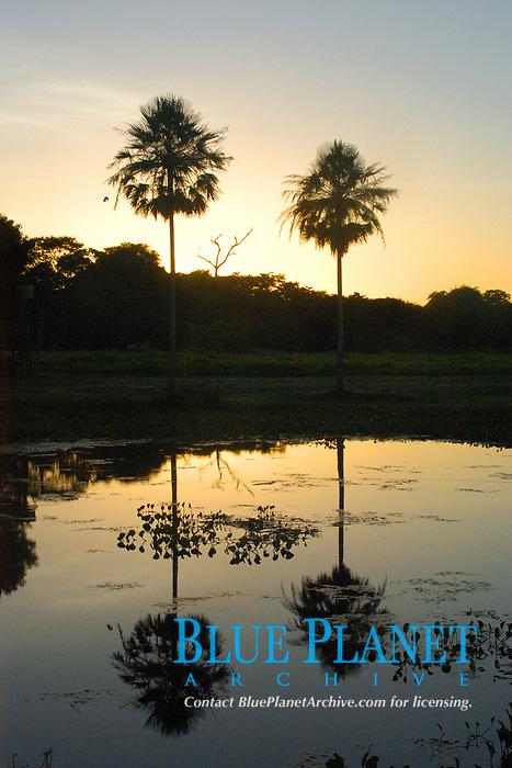 Sunset at southern Pantanal, Mato Grosso do Sul, Brazil