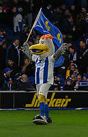 Brighton & Hove Albion mascot Gully<br /> <br /> Photographer David Horton/CameraSport<br /> <br /> The Premier League - Brighton and Hove Albion v Burnley - Saturday 9th February 2019 - The Amex Stadium - Brighton<br /> <br /> World Copyright © 2019 CameraSport. All rights reserved. 43 Linden Ave. Countesthorpe. Leicester. England. LE8 5PG - Tel: +44 (0) 116 277 4147 - admin@camerasport.com - www.camerasport.com