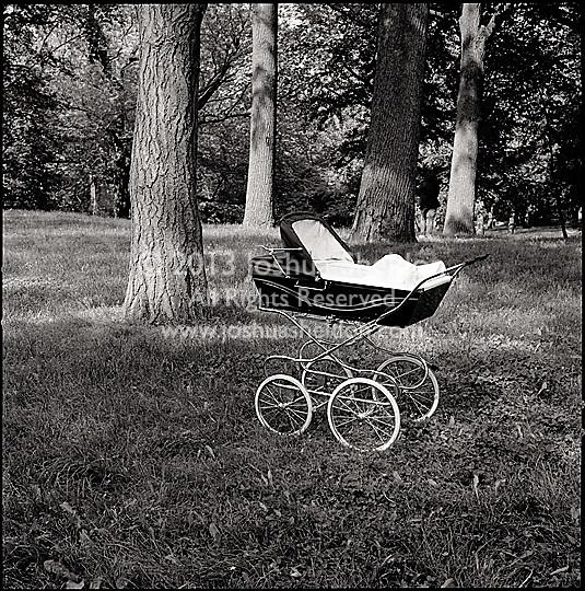 Baby stroller or Pram in the woods
