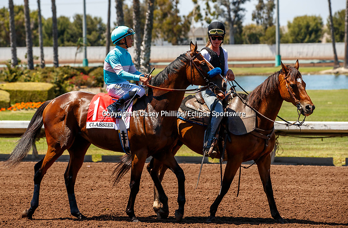 ARCADIA, CA  JULY 4:  #1 Classier, ridden by Mike Smith, in the post parade of the Los Alamitos Derby (Grade lll) on July 4, 2021 at Los Alamitos Race Course in Los Alamitos, CA.  (Photo by Casey Pnillips/ Eclipse Sportswire/ CSM)