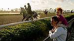 January 23, 2019: Horses prepare for the Pegasus World Cup Invitational at sunrise on January 23, 2019 at Gulfstream Park in Hallandale Beach, Florida. Scott Serio/Eclipse Sportswire/CSM